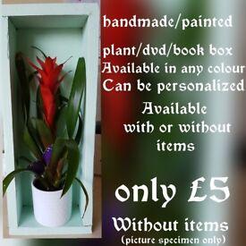 Handmade/painted plant/dvd/book box