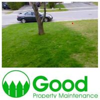 Lawn Care, Landscaping & construction.