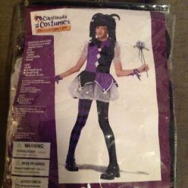 Jester girl fancy dress costume age 8-10