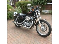 Harley Davidson Sportster XL883 Black 2006 - Low mileage