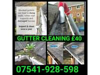 Gutter & Drain Cleaning *Special Offer* £40