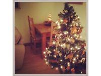 Next 5ft green christmas tree