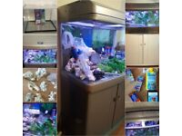 STUNNING CURVED PANORAMIC GLASS MODERN AQUARIUM ON MATCHING CABINET STAND COMPLETE SET UP QUICK SALE