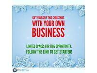 1 day Business Plan + Mentoring £49!