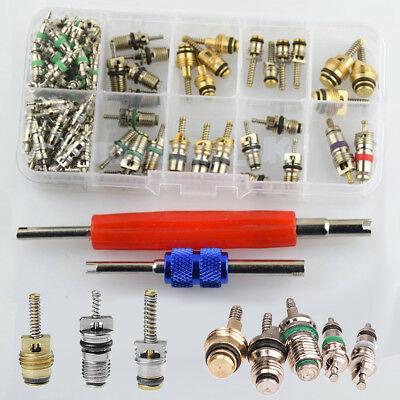 "102pc Car R134a/R12 A/C Air Schrader Valve Core & Remover Tool Kit 1/4"" 5/16"" US"