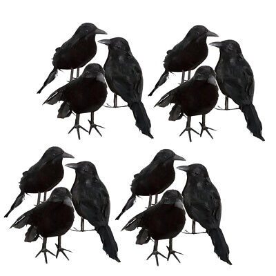 Raven Decorations For Halloween (12pcs New Black Feathered Small Crows Birds Ravens Props Decor for)