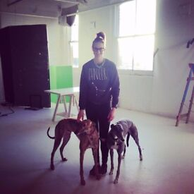 WANTED: Dog Friendly Rental Property in Nottingham - Working Female Professional