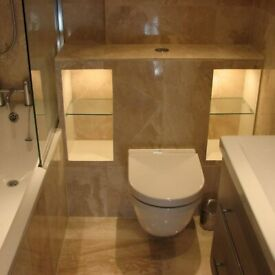 PROFESSIONAL BATHROOMS FITTERS