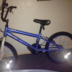 BMX bike blue piranha