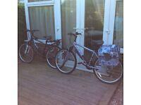 """Ladies & Gents 17"""" frame mountain bikes-Apollo Slant MTB and Apollo Jewel"""