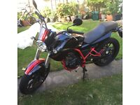 Derbi Mulhacen 125cc 2009