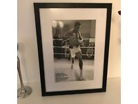 High Class Mohammed Ali in Wooden & Glass Frame
