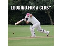 Cricket - Indoor nets this Sunday - Looking for a Cricket Club?