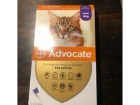 Cat flea and worming treatment