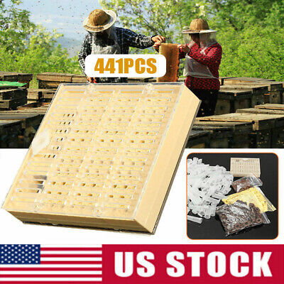 441pcs Beekeeping Rearing Cup Kit Queen Bee Cages Beekeeper Equipment Tools Us