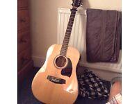 Ibanez Acoustic 12 String