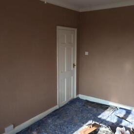 M Doyle local plastering specialist
