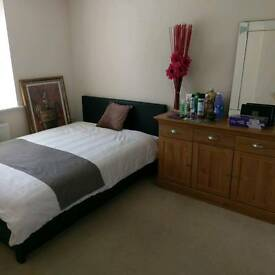 Nice room in quality home