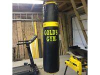 Golds Gym punch bag