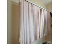 Full length blinds pale pink