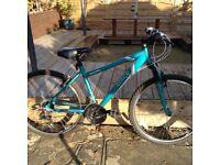 Ladies Apollo Entice Mountain Bike