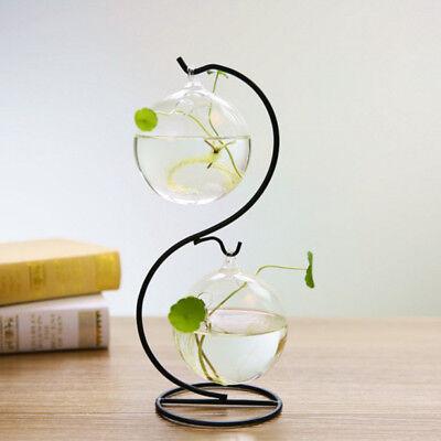 Glass Candle Holder Micro Landscape Terrarium Succulent Plant Pot 12cm_Round