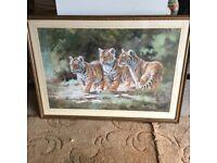 Three Tiger Cubs by Silvia Duran