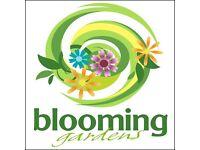 Get your garden in shape for summer.