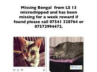 LOST BENGAL