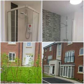 Two double bed flat To-let