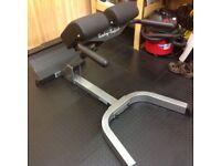 Body solid heavy duty hyper extension bench