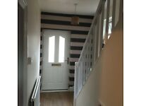 Local Painter and Decorator - Home maintenance - brilliant prices and references