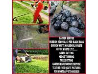 Proffesional Garden service grass cutting cheap price