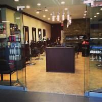 MARQUIS HAIRSTYLING STYLISTS WANTED !!!!!!