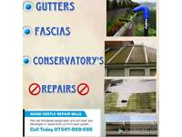 Fascias Conservatorys & Gutter Cleaning