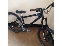 Univega dirt/jump bike