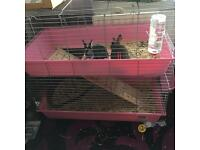 Double pink indoor rabbit cage (rabbits not included)