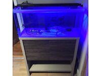 Fluval m90 full marine setup fish tank