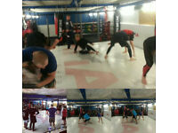 MMA Wrestling Grappling SAMBO Classes