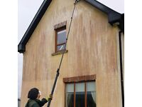 Professional cleaning of red, green, black stains on your home. Moss and lichens on your roof?