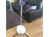 banjo / brand new hard case / and plug in pickup for amp