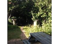 Double room for rent in Worthing available now