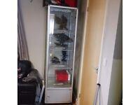 Glass shop lockable cabinet