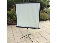 Projector screen rank d-lite vintage