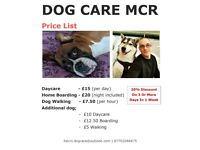Dog Care Mcr - professional dog sitter