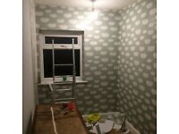 PAINTER (MR FEATURE (WALLPAPER SPECIALIST) £50 Offer.Read below for more information.
