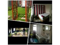 Double room to rent - beautiful and warm - £125 pw - single person only