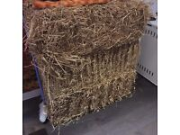 3 Hay bales free of charge - pick up ASAP