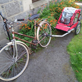 For sale, one red trailer (if you buy the trailer, you can get a bike free from me).