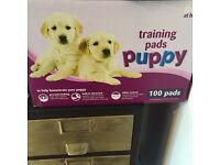 Puppy Pads - BRAND NEW BOX from Pets at Home